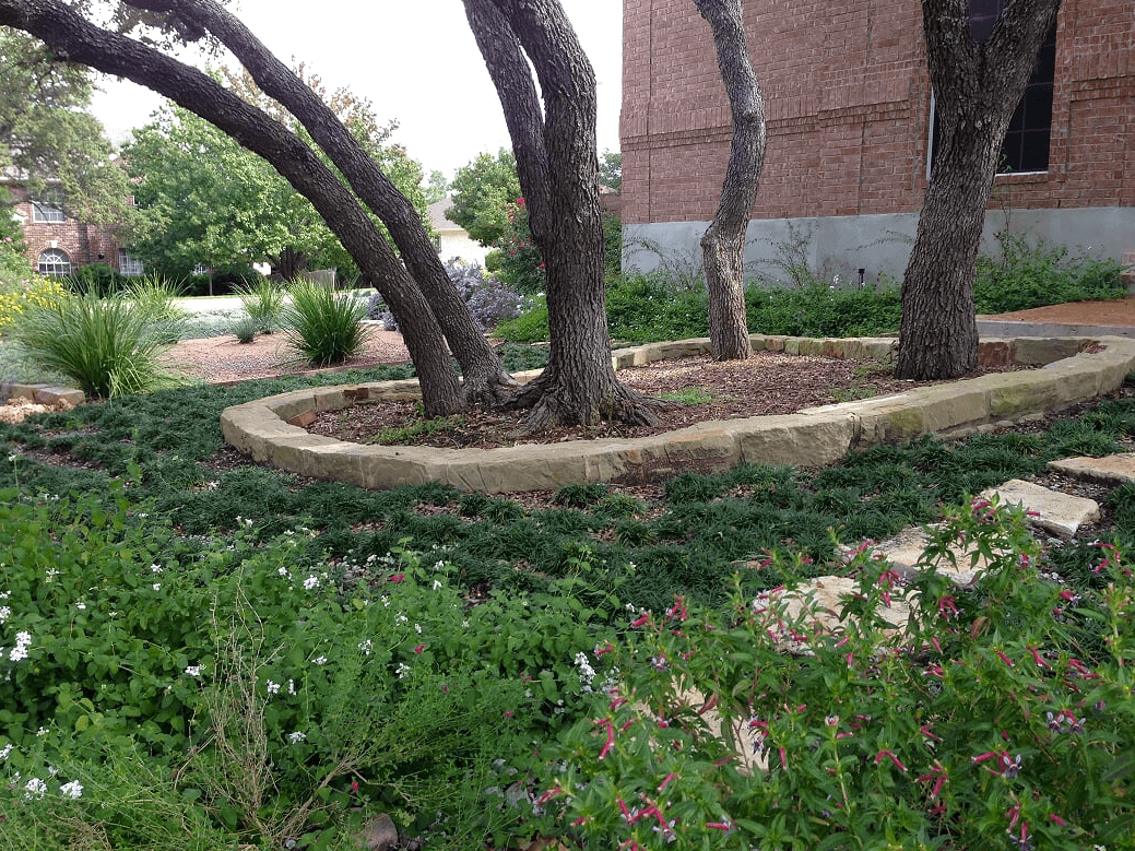 hill country design yarrow landscaping